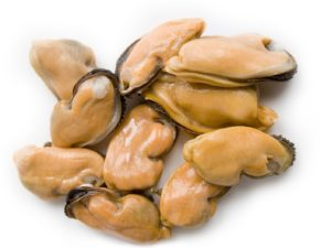 Mussel Meat IQF