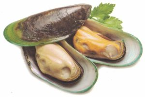 NZ Half Shell Green Mussel